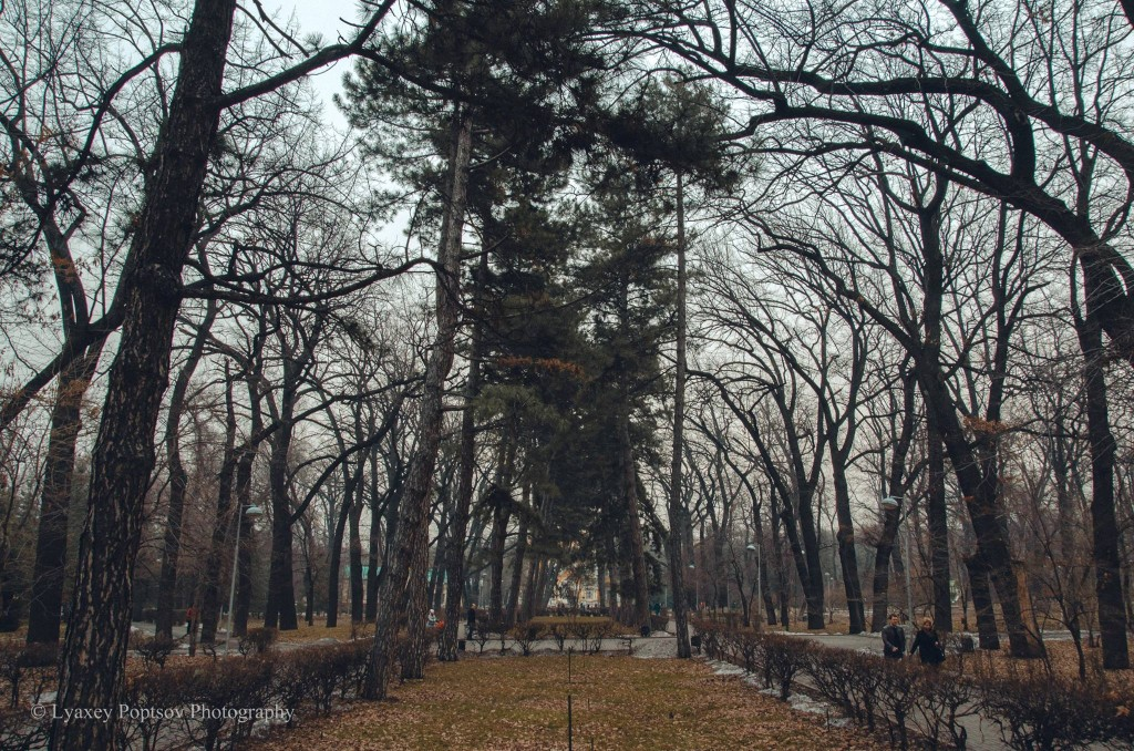 Парк 28 панфиловцев