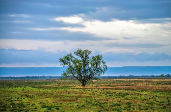 Южный Казахстан