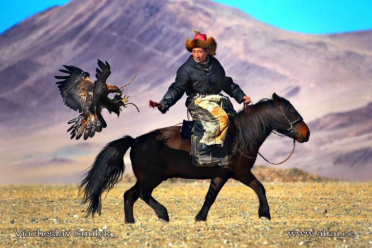 Казахский охотник с беркутом