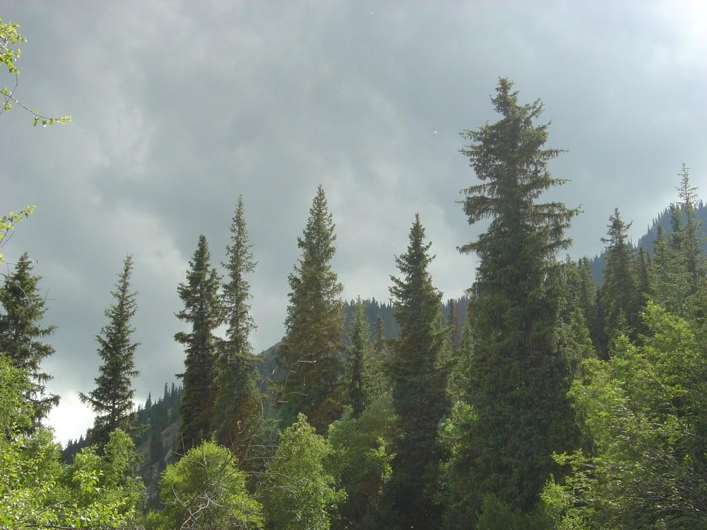 В горах погода меняется быстро.